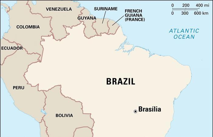 """""""كركدن بدل من فاسد"""".. فضيحة هزت البرازيل بالخمسينيات!"""
