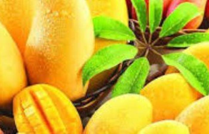 أطعمة صيفية تساعد فى التغلب على الحرارة وتعزز الصحة.. أبرزها المانجو
