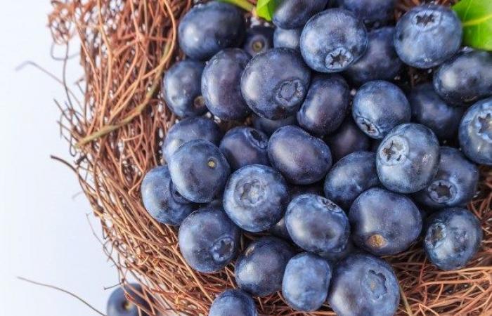 6 أطعمة هتساعدك على التخسيس فى الصيف.. أبرزها الجمبرى والخيار
