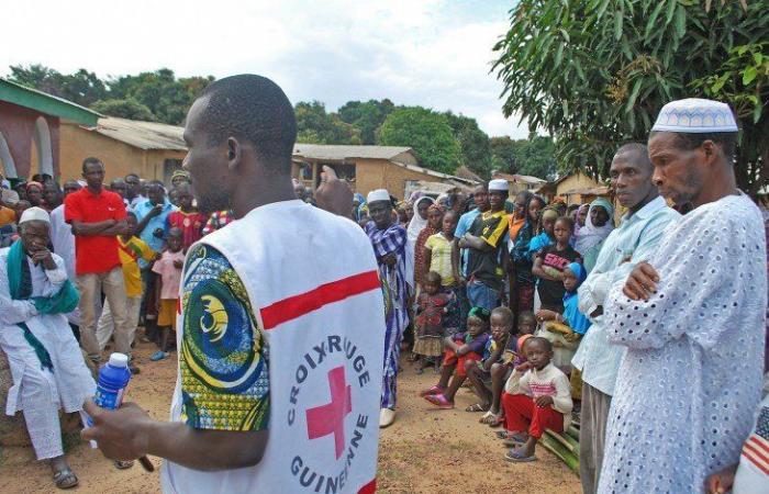 """فيروس """"ماربورغ"""" القاتل يتفشى في غينيا"""